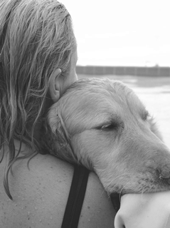 Dogs are our link to Paradise…
