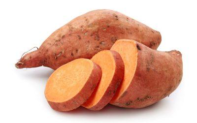 Orange Veggie Differential